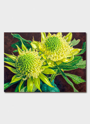 Fiona Craig Art Card - Green and White Waratahs