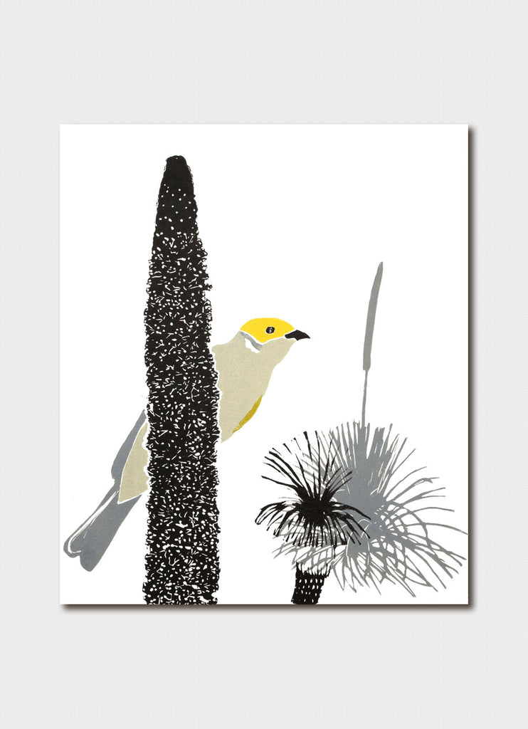 Fleur Rendell art card - White Plumed Honeyeater