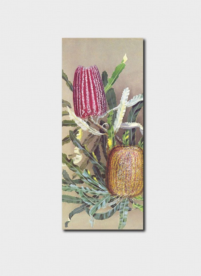 Ellis Rowan Menzies Banksia Bookmark