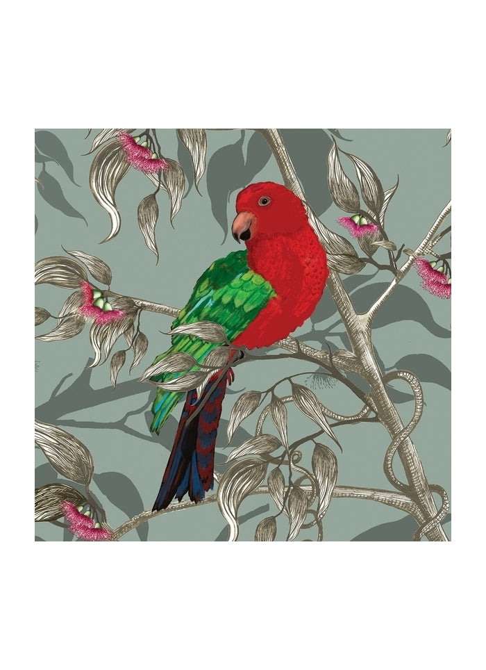 Tamara Design Co - King Parrot