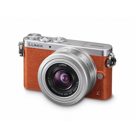 Panasonic Lumix DMC-GM1 Mirrorless Camera with 12-32mm Lens Kit