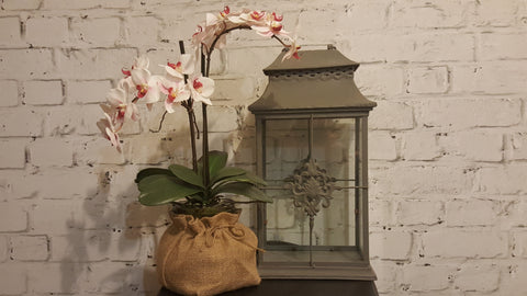 Pink and White Orchid in Hessian Sack with grey metal lantern