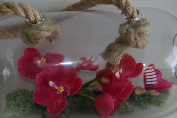 Orchid in hanging cloche - adorned-interiors