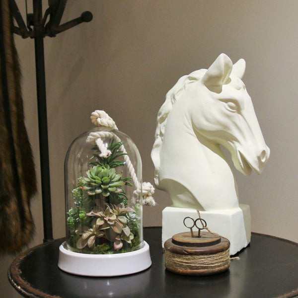 Rope cloche with succulents - adorned-interiors