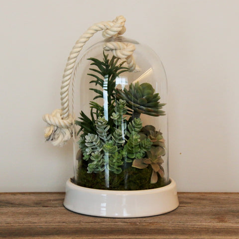 Rope cloche with succulents
