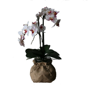 Orchid in hessian sack - adorned-interiors