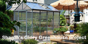 Palram 6 ft. Wide, 10mm Glory Greenhouse in Grey