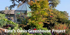 Kate's Oasis Greenhouse Project
