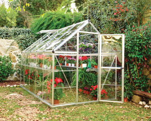 Palram Harmony™ 6 ft. x 10 ft. Greenhouse Clear Panels Silver Frame