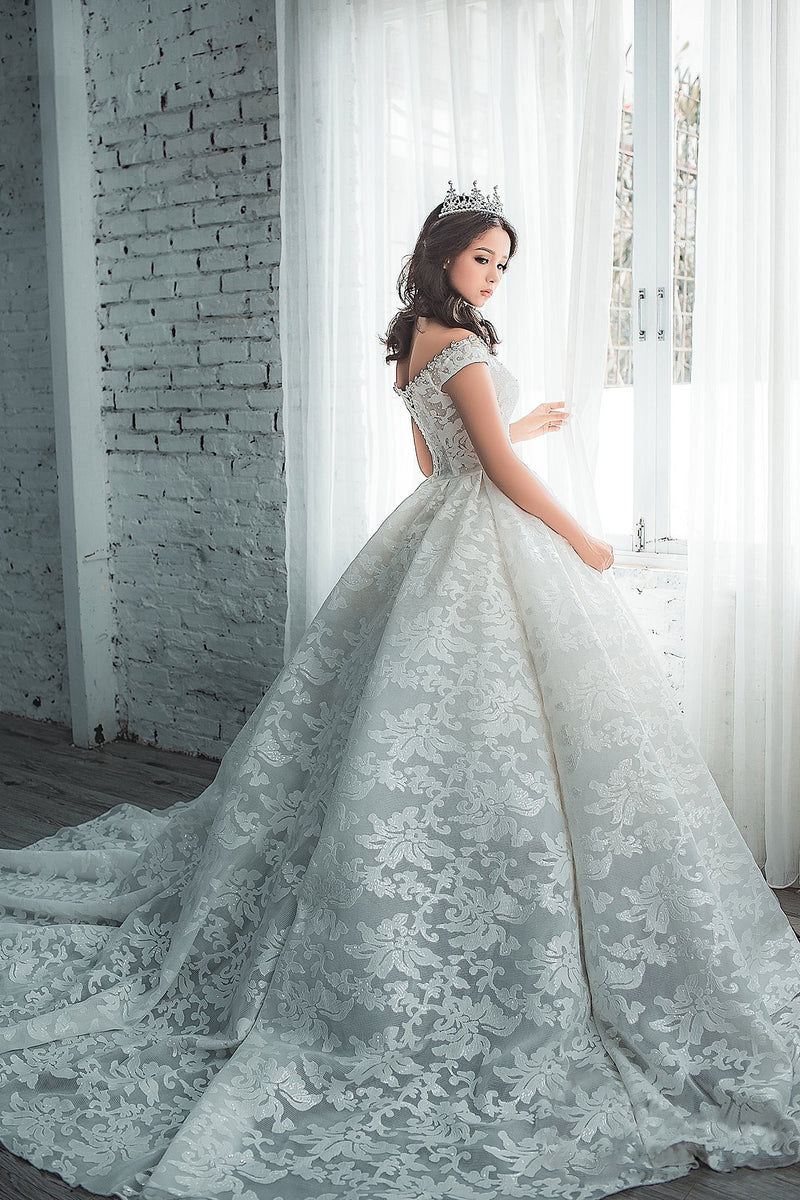 Penelope sparkling lace princess wedding dress