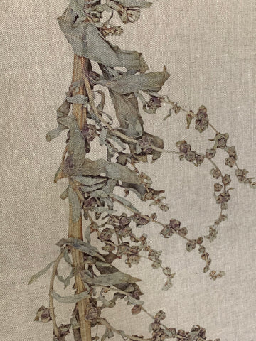 Runner: Dried Fynbos - fringed edges