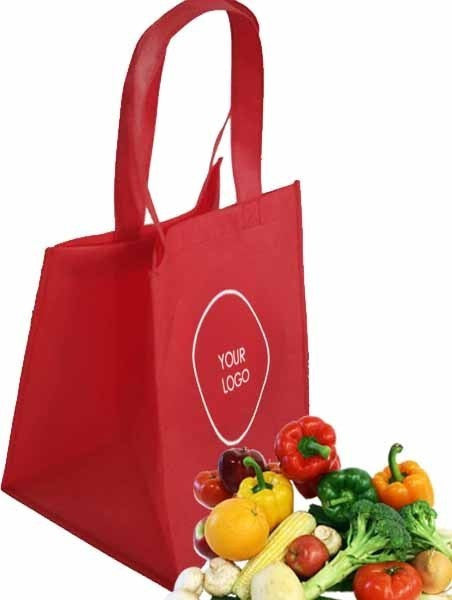 Non Woven Grocery Bags Standard