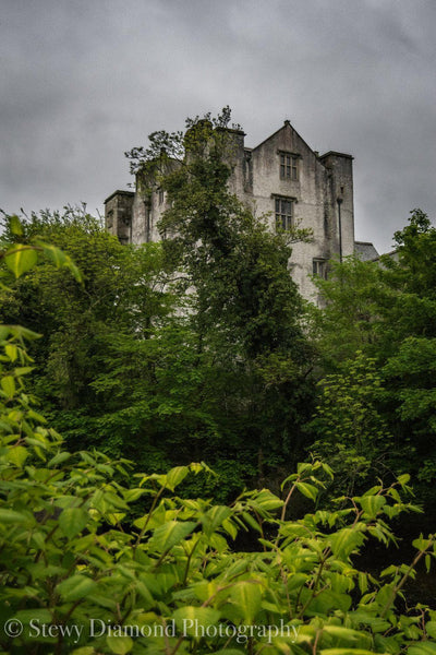 Donegal Castle - Digital Download