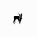 Boston Terrier Enamel Pin - George Brown College