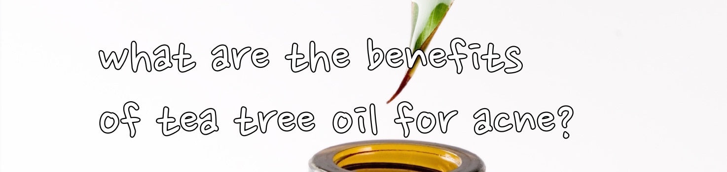 what are the benefits of tea tree oil for acne?