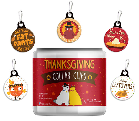Thanksgiving Collar Clips Jar