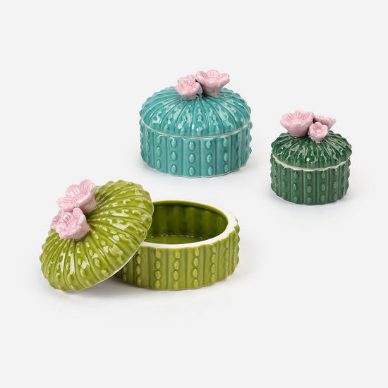 Cactus box Set of 3