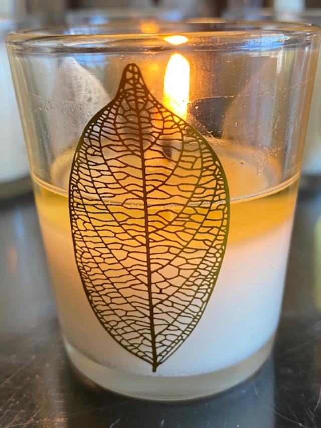 Fig Leaf - 3oz Candle