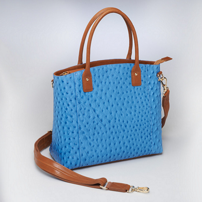 Blue Town Concealed Carry Tote