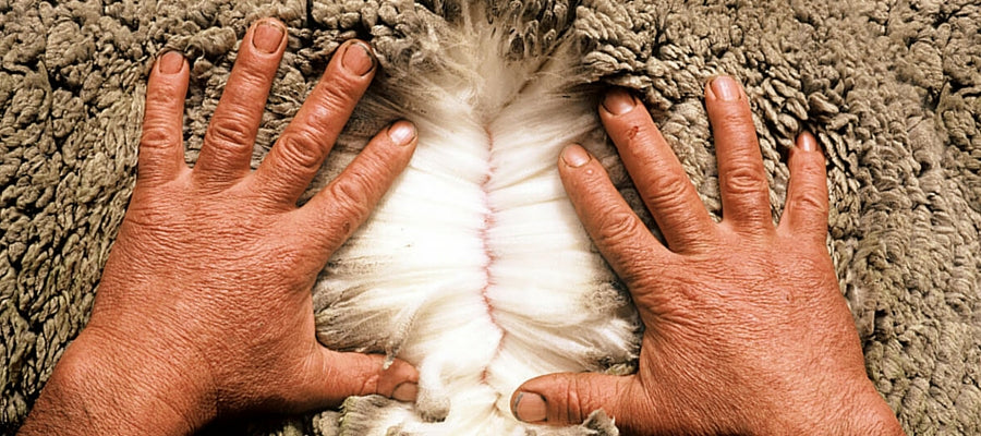 merino wool is strong, durable and flexible