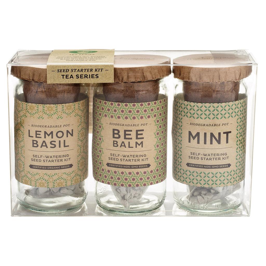 Eco Seed Starter Kit - Tea Series