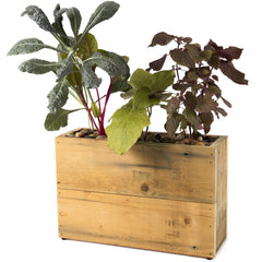 3 pot hydro planter - reclaimed wood