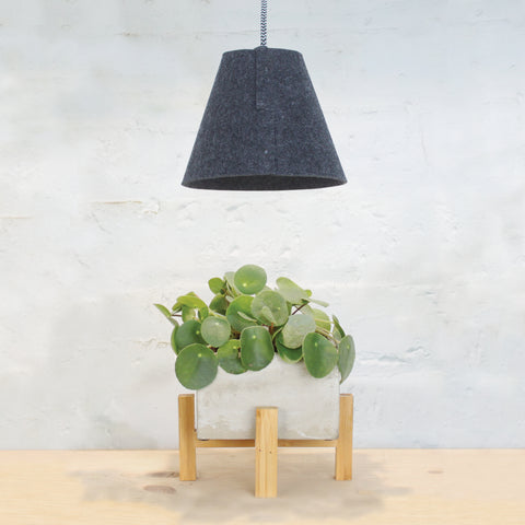 Felt Pendant Growlight
