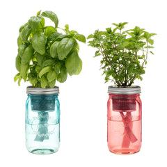 Garden Jar Two Pack: Cocktail