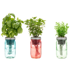 Garden Jar Three Pack: Asian