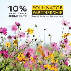 Pollinator Push Garden - Party Pack (16)