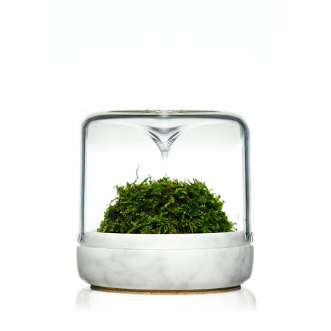 Sanctuary S, Carrara Marble + Moss