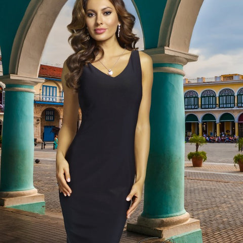 Frank Lyman Sheath Dress