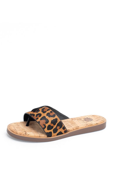 Yellow Box Baran Sandal in Leopard