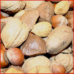 Nuts In The Shell: Mixed