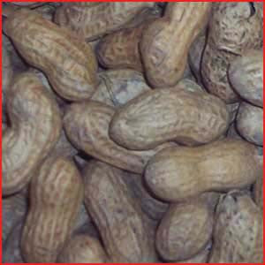Peanuts In The Shell, Cajun 30 - 10 Ounce Bags