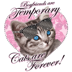 """FOREVER CAT"" COMBO RH - RHINESTONE TRANSFER by AWD. <font face=""Times New Roman""><i> 19664HLR4 </i></font>"