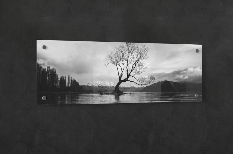 black and white panoramic acrylic panel print