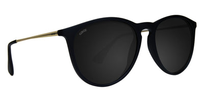 Black Sunglasses With Gold Metal Arms and Polarized Smoke Lenses