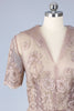 Breathtaking 1950s Mauve Lace Dress