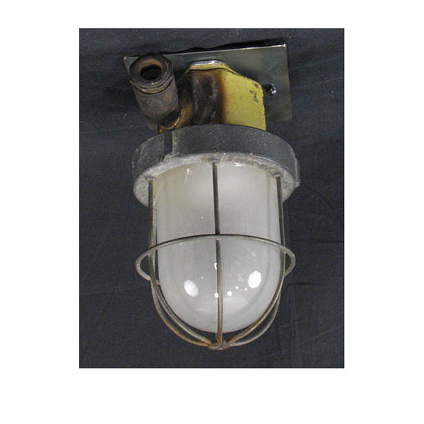 Caged Industrial Ceiling Light