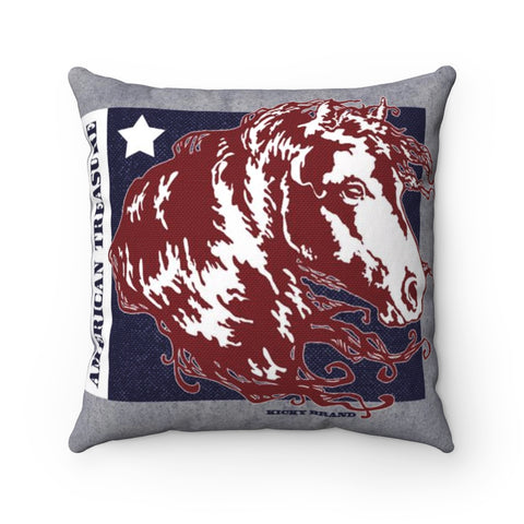 American Treasure Throw Pillow