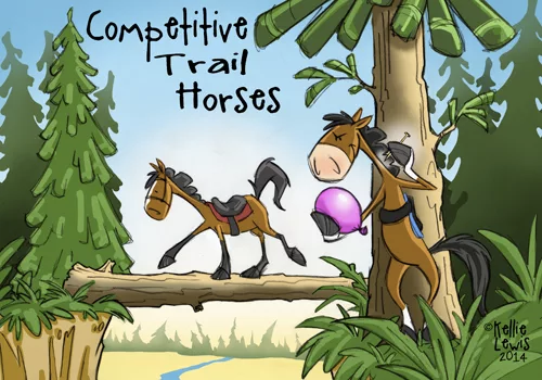 Competitive Trail Horse