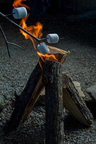 marshmallow stick for dad - ski country