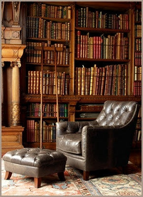 antique leather chair in library