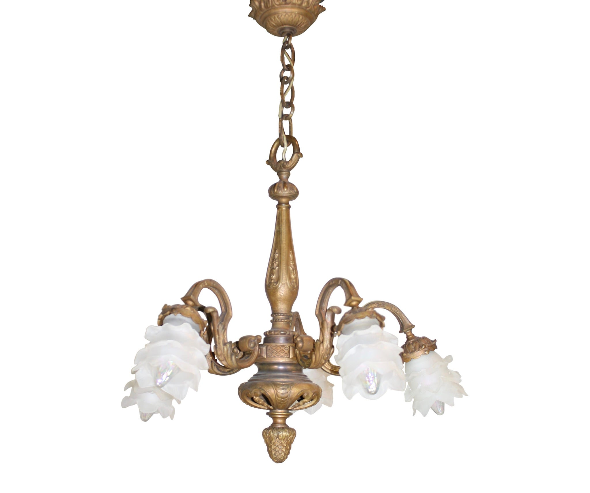 Five Arm Chandelier with Glass Shades