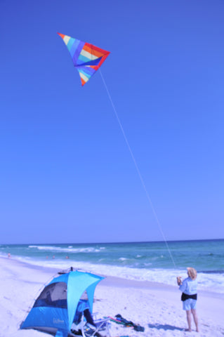 12 foot Rainbow Delta Kite