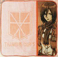 Attack On Titan Mikasa Ackerman Hand Towel