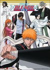 Bleach Ichigo Team Wall Scroll - Alpine Anime
