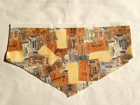 Travel Map 2 Pet Bandana