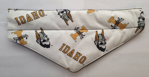 University of Idaho Vandals 2 Pet Bandana